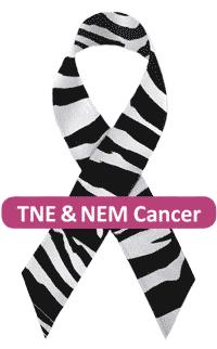 asbl TNE NEM Cancer ruban zèbre | vzw NET & MEN Kanker